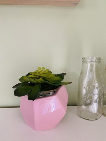 My now plastic plant sitting above my desk.