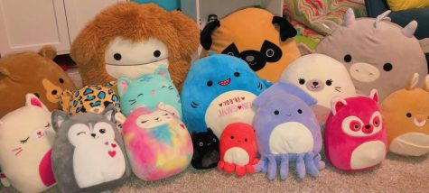 A family of Squishmallows holding a gathering of sorts.