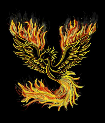 Like a phoenix, I will rise from whatever gets thrown my way