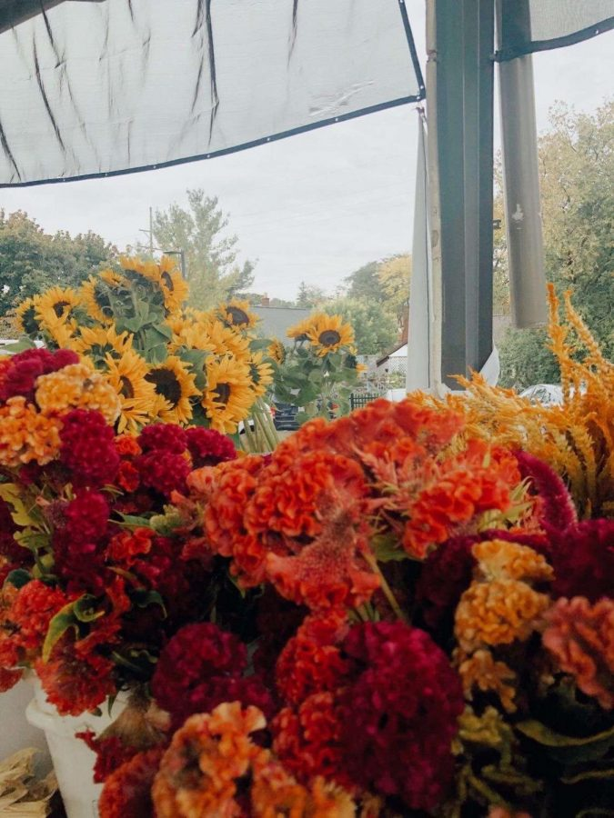 a wide array of flowers at a local farmer