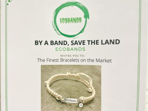 Intro to Business Q&As: Kyle Webb – EcoBands