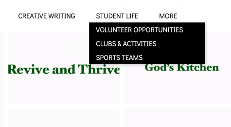 A picture of the menu bar that displays the Student Life Page tab